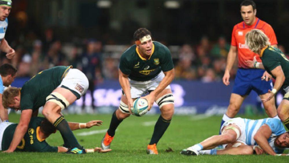 4 nations afrique du sud louw dans le xv de départ 15 rugby international