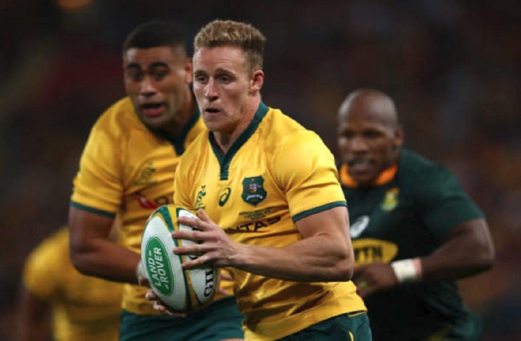australie hodge forfait pour la tournée rugby international xv de départ 15
