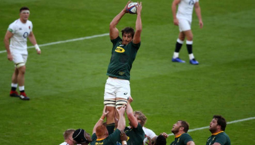 springboks etzebeth finalement absent rugby international xv de départ 15