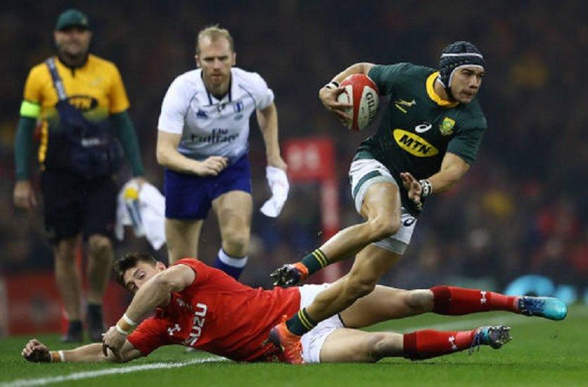 springboks steyn kolbe et elstadt appelés rugby france xv de départ 15