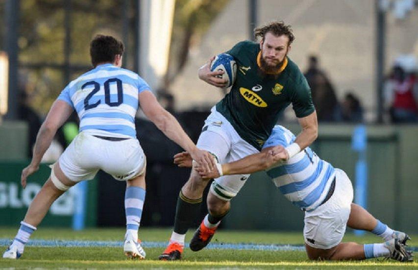 les springboks s'offrent encore l'argentine rugby international xv de départ 15